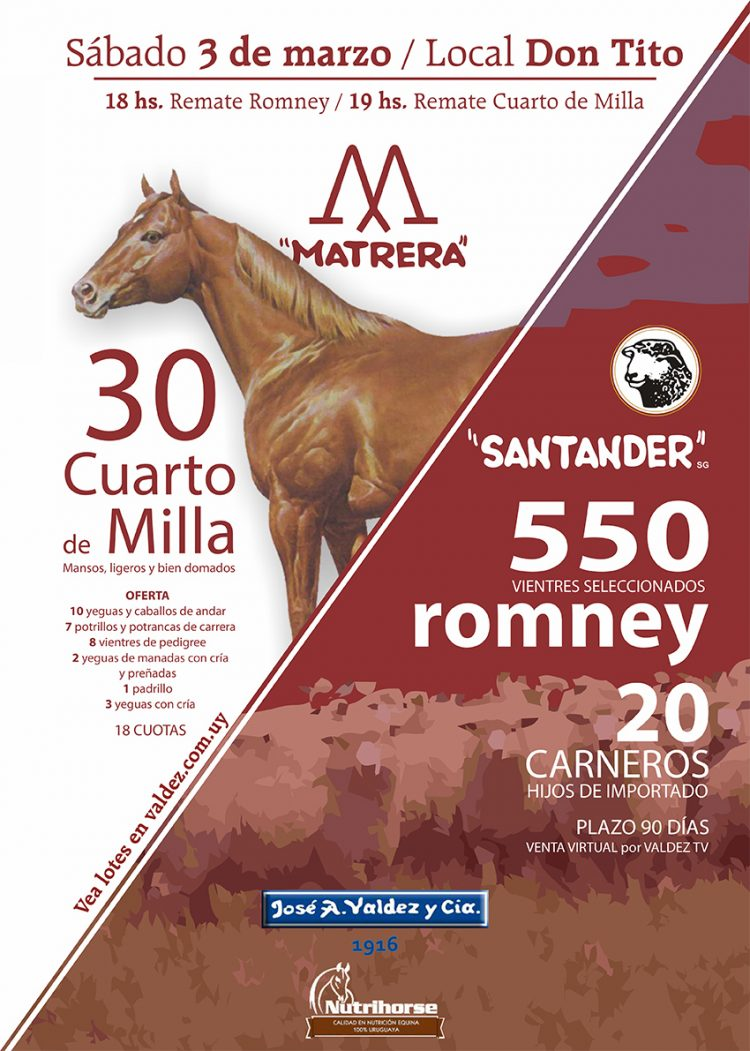 Remate «Santander» Romney y «Matrera» Cuarto de Milla